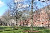 yale_university_old_campus_04